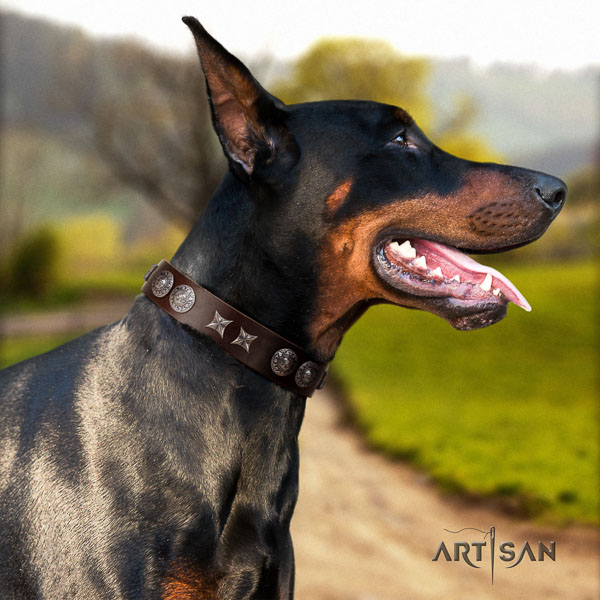 Doberman full grain natural leather dog collar with decorations for your handsome dog