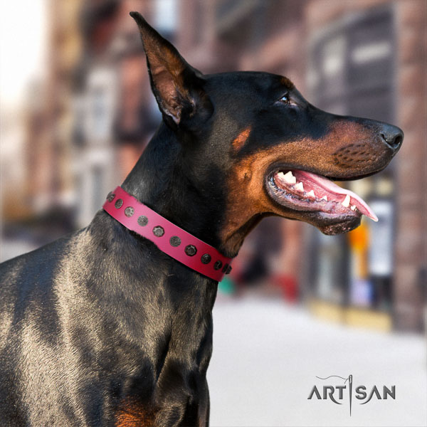 Doberman full grain natural leather dog collar with studs for your beautiful four-legged friend