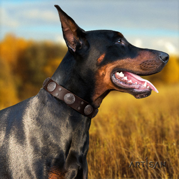 Doberman natural genuine leather dog collar with studs for your attractive dog