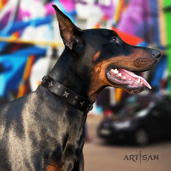 Doberman natural genuine leather dog collar with adornments for your beautiful doggie