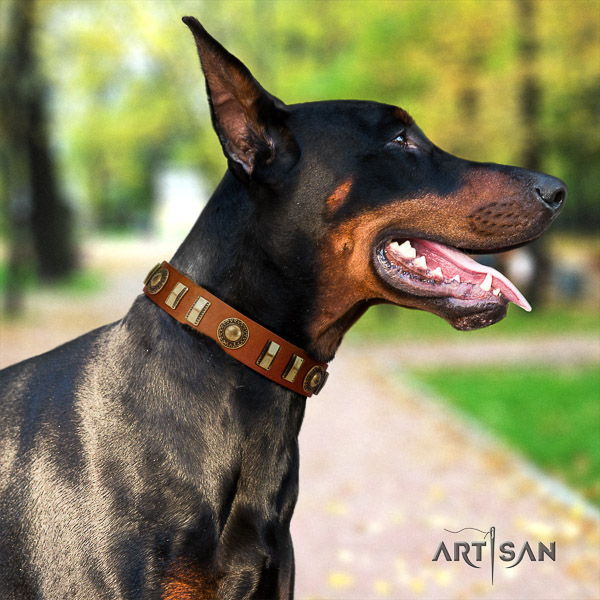 Doberman everyday walking full grain genuine leather collar with studs for your dog