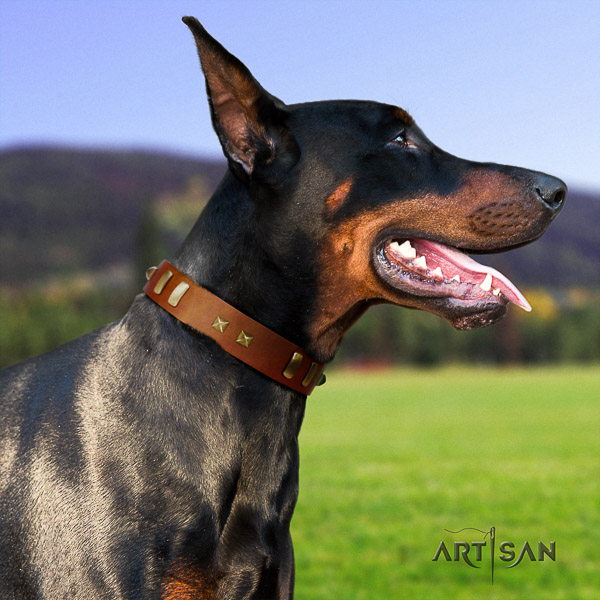 Doberman comfortable wearing natural leather collar with embellishments for your four-legged friend