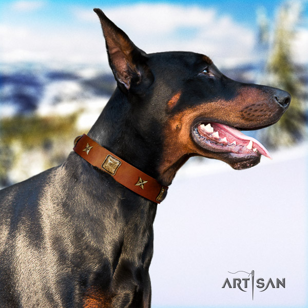 Doberman easy wearing full grain genuine leather collar with adornments for your four-legged friend