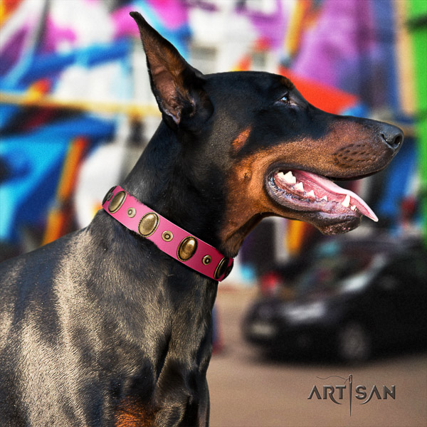 Doberman everyday use full grain leather collar with unique adornments for your canine