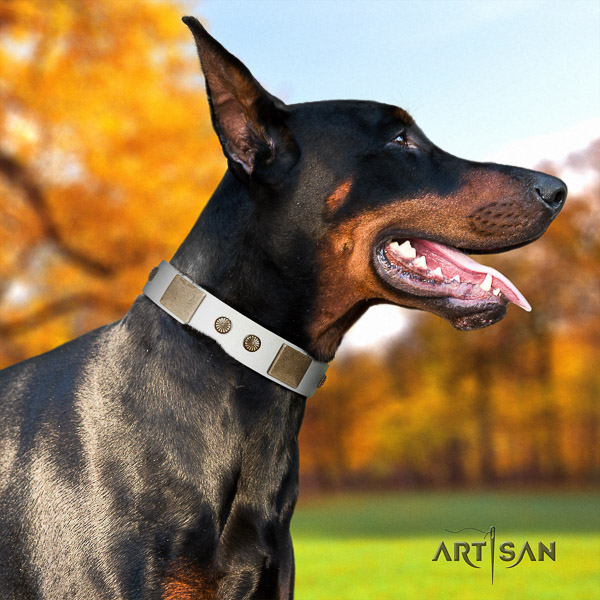 Doberman basic training full grain genuine leather collar with embellishments for your four-legged friend
