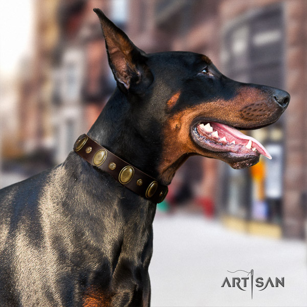 Doberman handy use leather collar with embellishments for your four-legged friend