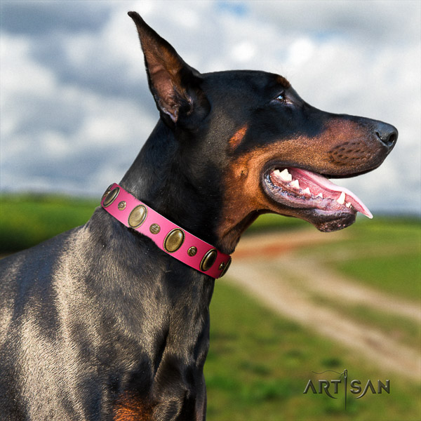 Doberman comfy wearing natural leather collar with embellishments for your pet