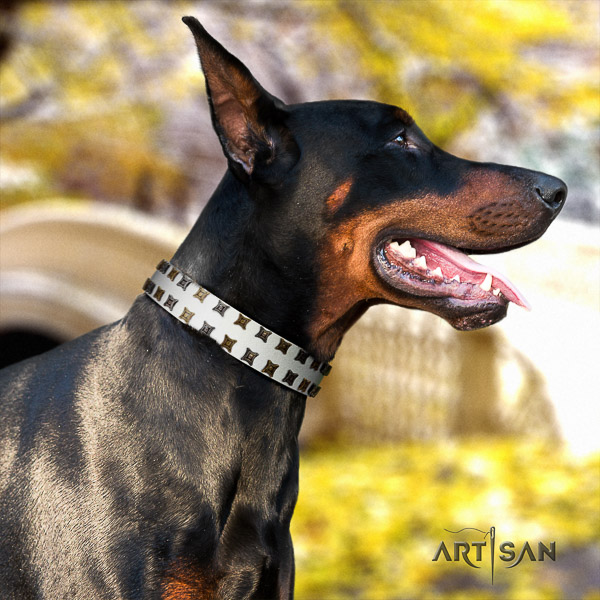 Doberman everyday use full grain leather collar with studs for your dog