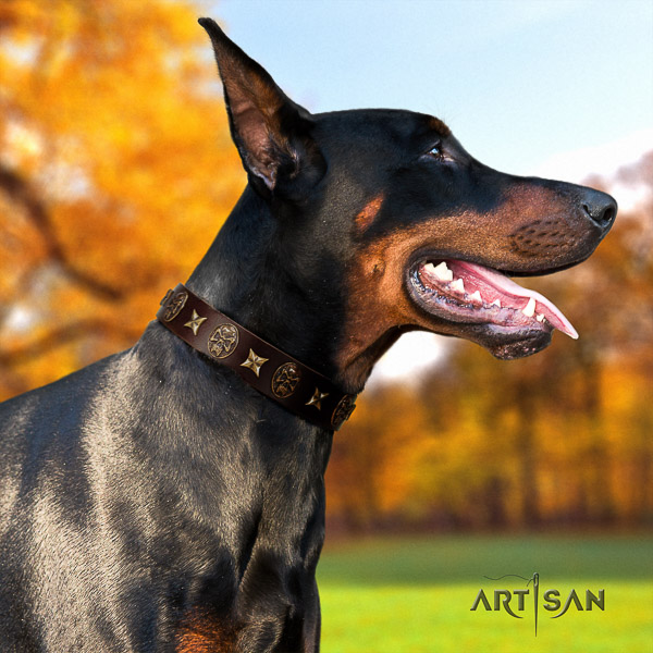Doberman everyday use full grain genuine leather collar with adornments for your dog