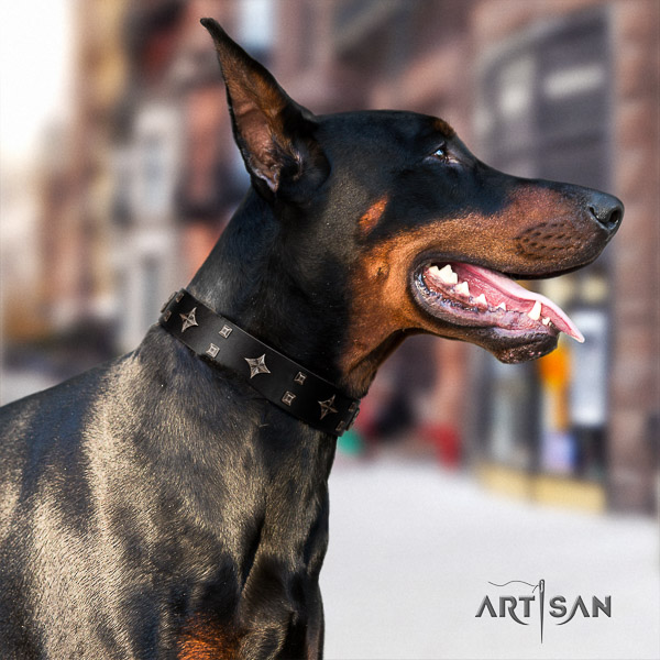 Doberman daily use full grain leather collar with unusual studs for your dog