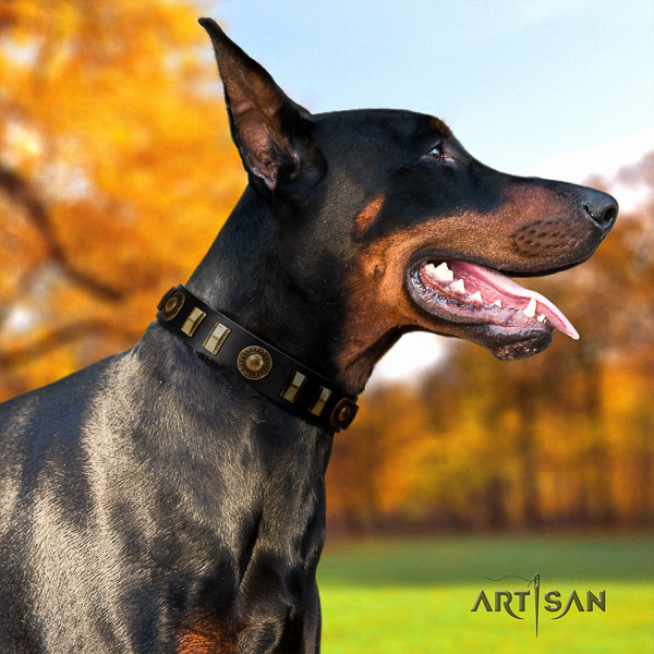 Doberman walking full grain natural leather collar with studs for your canine
