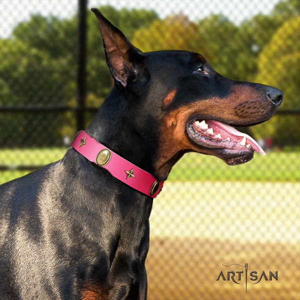 Doberman everyday walking natural leather collar with stunning studs for your doggie