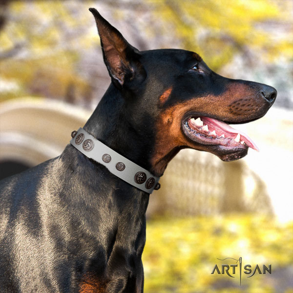 Doberman leather dog collar with studs for your handsome pet