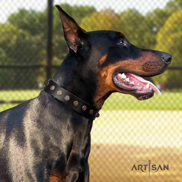 Doberman genuine leather dog collar with adornments for your stylish four-legged friend