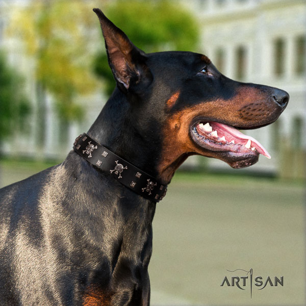 Doberman full grain natural leather dog collar with decorations for your lovely four-legged friend