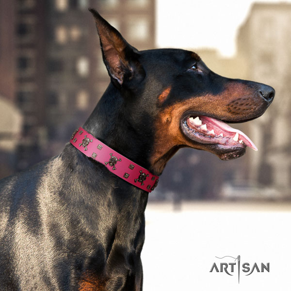 Doberman full grain natural leather dog collar with embellishments for your stylish canine