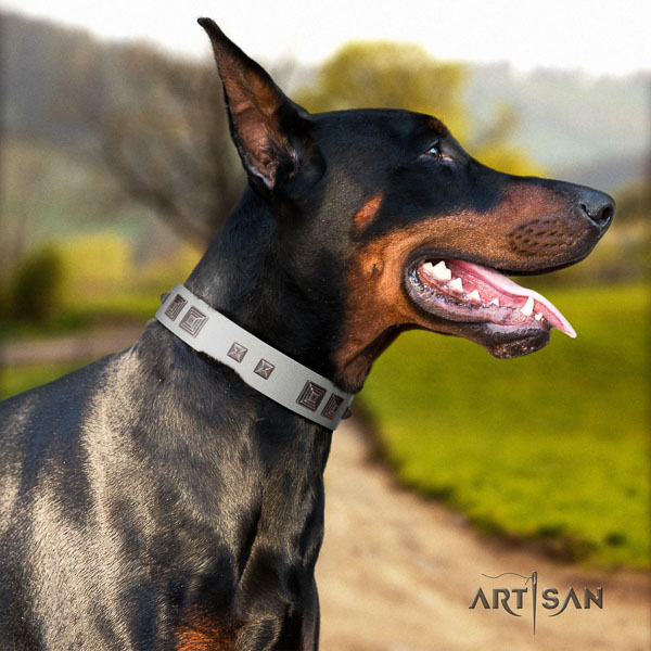 Doberman full grain natural leather dog collar with adornments for your impressive dog