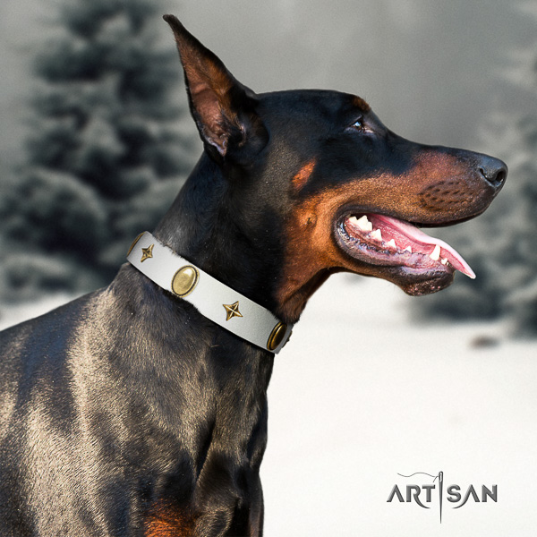 Doberman walking full grain leather collar with exceptional embellishments for your dog
