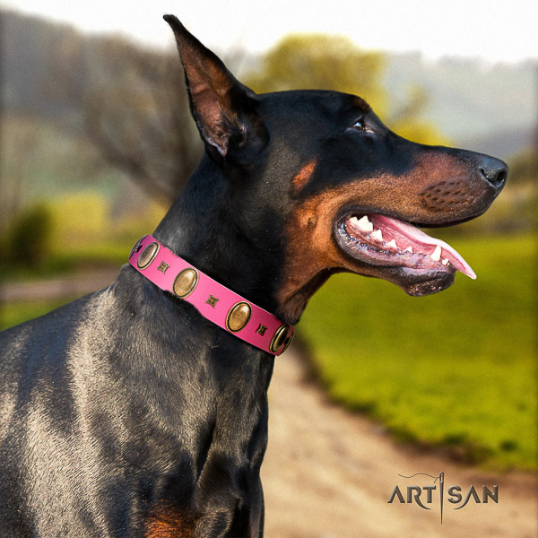 Doberman handy use leather collar with top notch studs for your pet