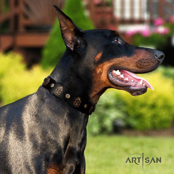 Doberman stylish walking genuine leather collar with decorations for your doggie