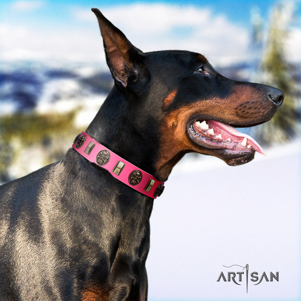 Doberman basic training full grain leather collar with decorations for your four-legged friend