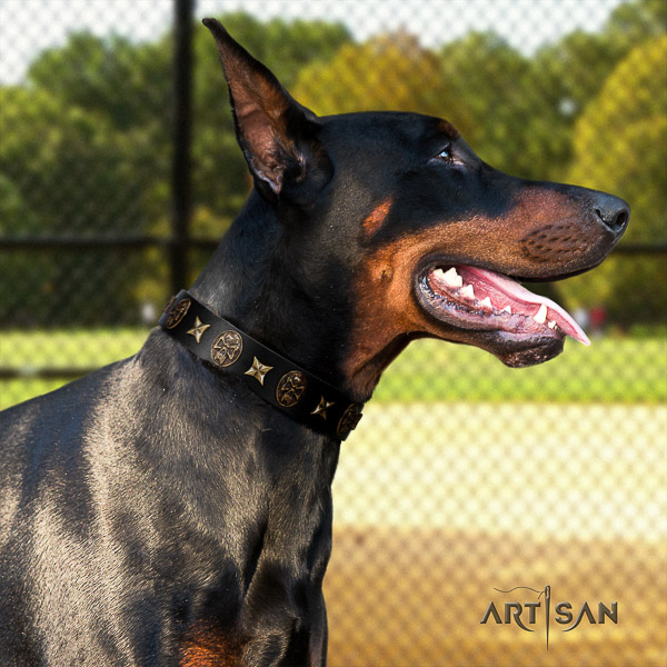Doberman basic training leather collar with embellishments for your doggie