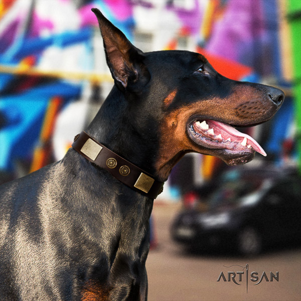 Doberman fancy walking leather collar with studs for your pet