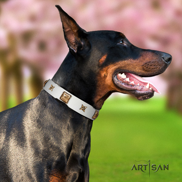 Doberman comfy wearing full grain leather collar with decorations for your dog