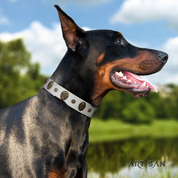 Doberman handy use full grain genuine leather collar with adornments for your pet