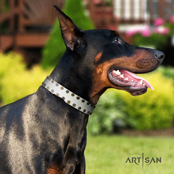 Doberman comfortable wearing full grain leather collar with decorations for your dog