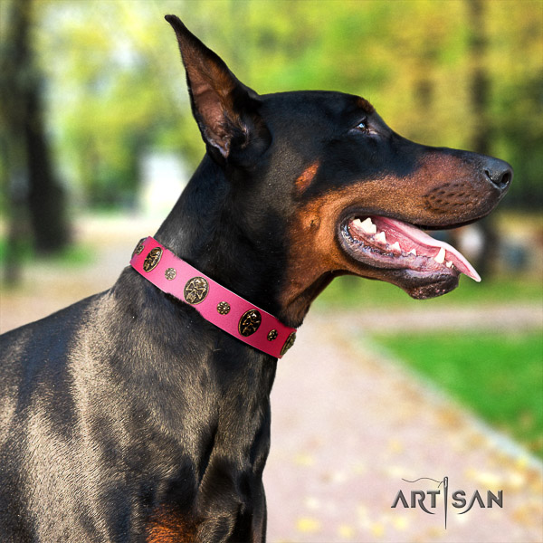 Doberman comfortable wearing leather collar with studs for your four-legged friend