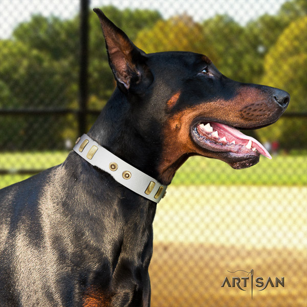 Doberman daily walking full grain leather collar with designer embellishments for your canine