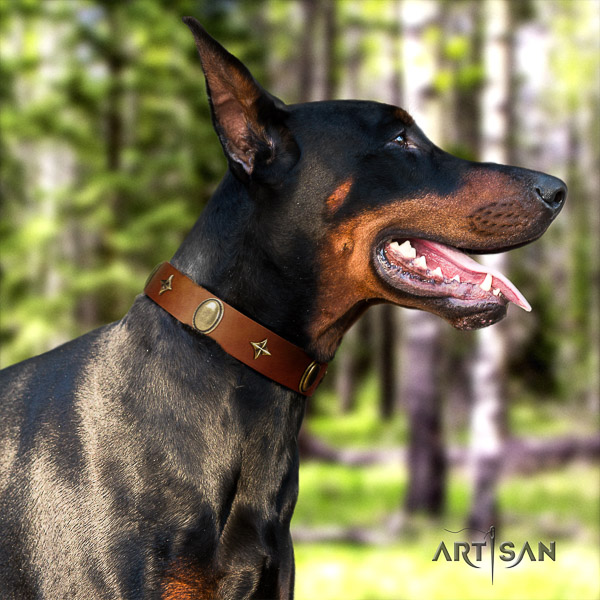 Doberman easy wearing genuine leather collar with stunning embellishments for your dog