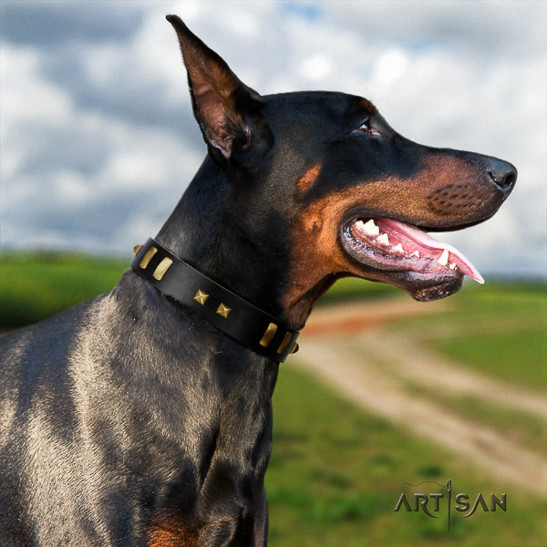 Doberman everyday walking full grain genuine leather collar with studs for your canine