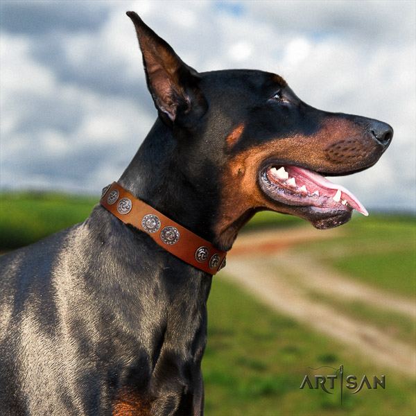 Doberman easy wearing leather collar with extraordinary embellishments for your pet