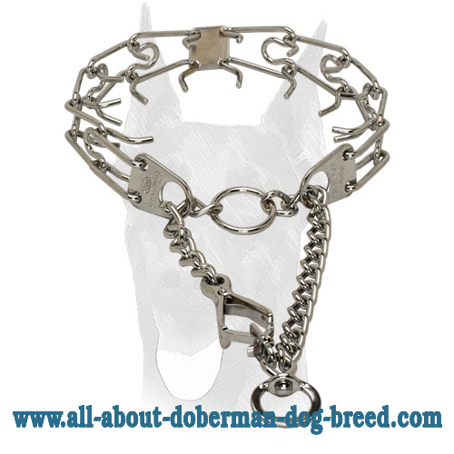 Prong Collar with Quick Release Snap for Doberman
