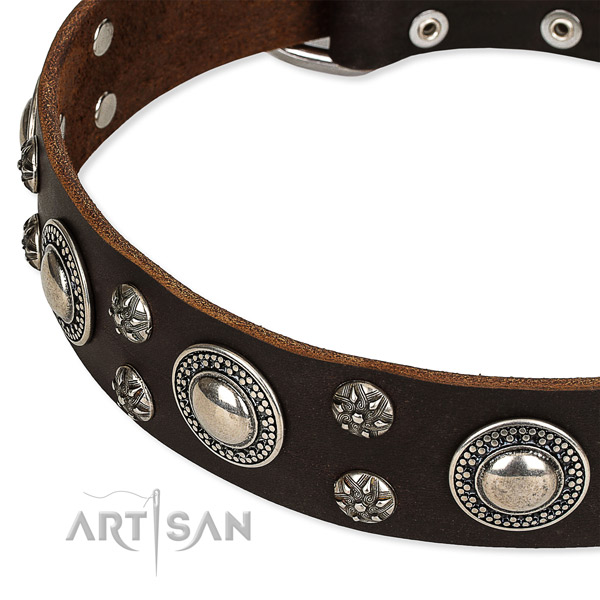 Easy to put on/off leather dog collar with extra sturdy rust-proof fittings