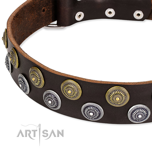 Snugly fitted leather dog collar with extra sturdy durable fittings