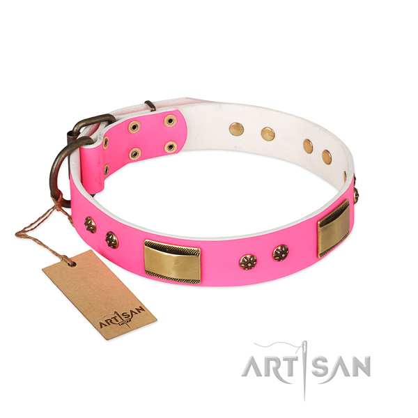 Fashionable design studs on full grain leather dog collar