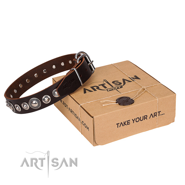Stylish design full grain natural leather dog collar for walking in style