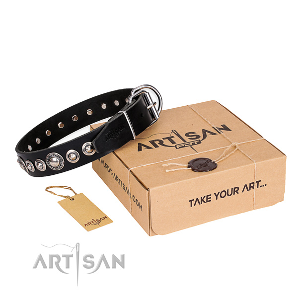 Best quality leather dog collar for walking in style