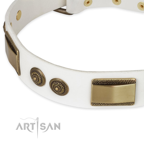 Daily use genuine leather collar with durable buckle and D-ring