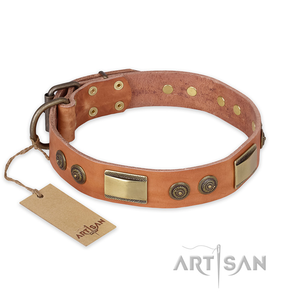 Significant design studs on natural genuine leather dog  collar