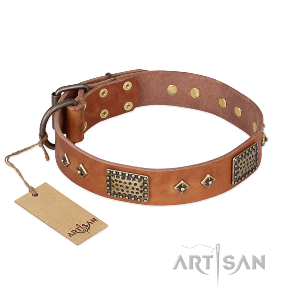 Inimitable design adornments on full grain genuine leather dog collar