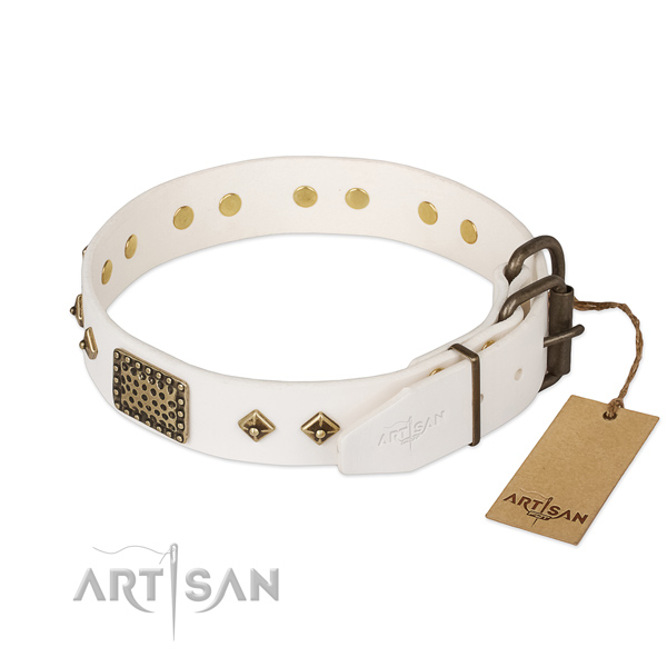 Daily walking full grain leather collar with studs for your dog