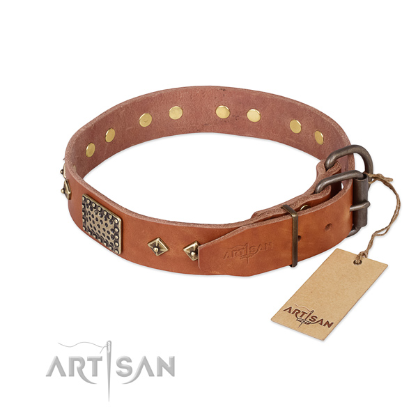 Daily use leather collar with decorations for your doggie