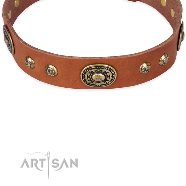 Walking full grain natural leather collar with corrosion resistant buckle and D-ring