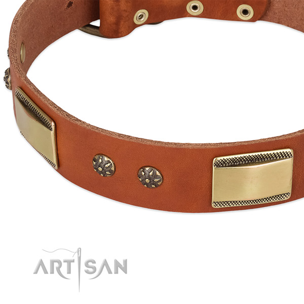Everyday use leather collar with corrosion proof buckle and D-ring