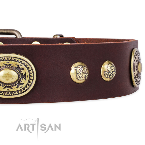 Daily walking leather collar with corrosion proof buckle and D-ring