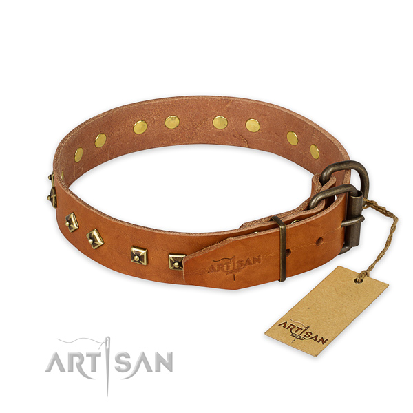 Stylish walking full grain leather collar with embellishments for your pet